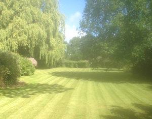 Fencers and landscapers in Ashford